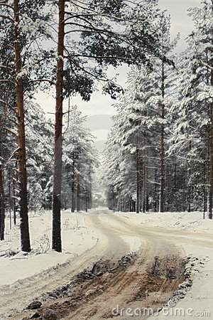 Free Winter Road To A  Wood Stock Photo - 7231540