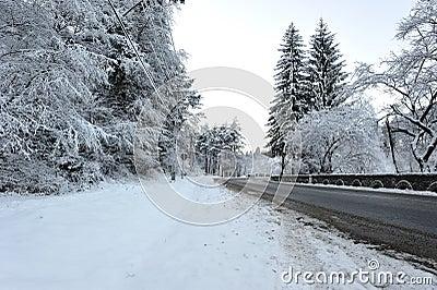 Road transient in winter season