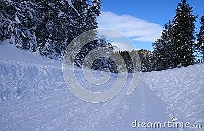 Winter Rural Roads 5