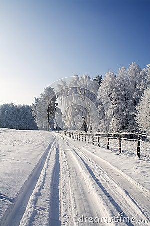 Free Winter Scene Royalty Free Stock Photography - 4703347