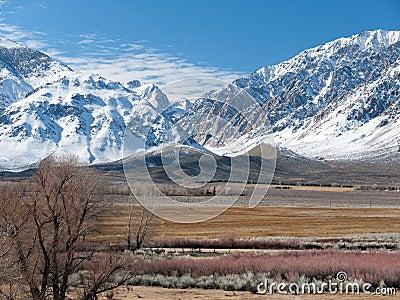 Winter scene in the Eastern Sierra Nevada Range