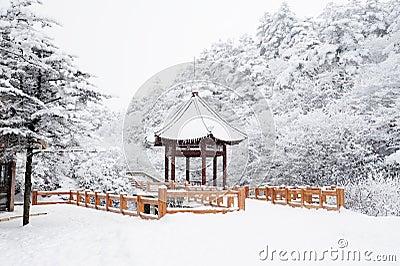Winter scene at mt. emei