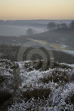 Winter scene over moor
