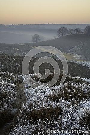 Winter scene over moor