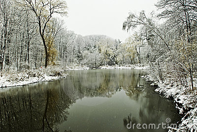 Winter scene with pond and trees
