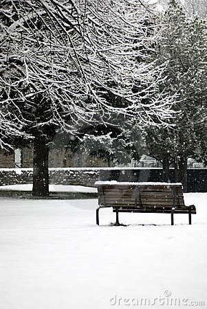 Free Winter Scene - Snowfall In The Park Royalty Free Stock Photos - 7962188