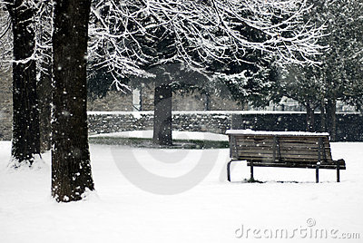 Winter scene - snowfall in the park