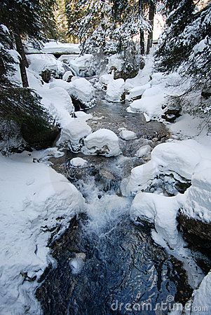Winter Scene with Stream