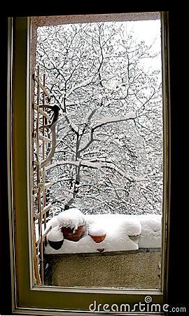 Free Winter Scene Through A Window Stock Photos - 1829423