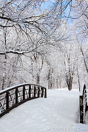 Free Winter Scene With Bridge Royalty Free Stock Image - 30069746
