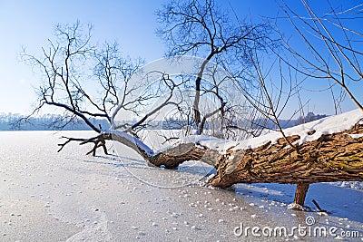 Winter scenery of frozen lake