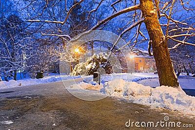 Winter scenery of snowy park in Gdansk