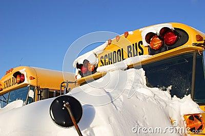 Winter School Buses 1