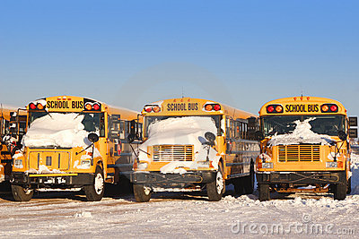 Winter School Buses 2