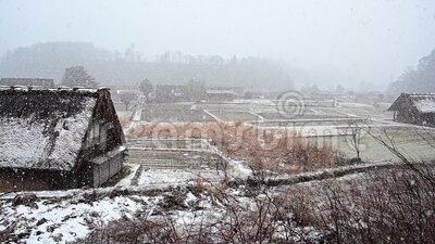 Winter of Shirakawago historic village with snow falling footage. Winter of Shirakawago historic village with snow falling, Ono district, Gifu prefecture, Japan stock video footage