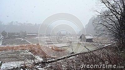 Winter of Shirakawago historic village with snow falling footage. Winter of Shirakawago historic village with snow falling, Ono district, Gifu prefecture, Japan stock video