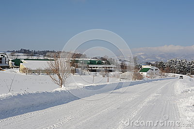 Winter snow landscape with snow-covered road