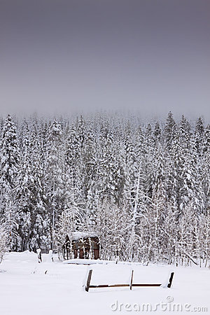 Winter Snow Shack