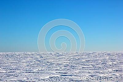 Winter snowy field