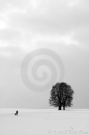 Winter Solitude Royalty Free Stock Image - Image: 2870886