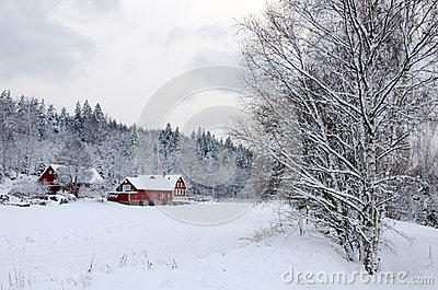 Winter in southern Sweden