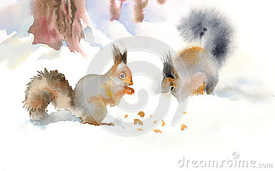 Winter squirrels eating nuts