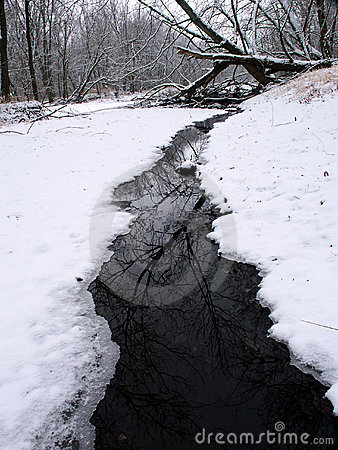 Winter Stream Scene in Illinois