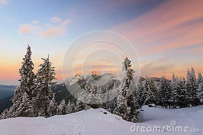 Winter sunrise landscape
