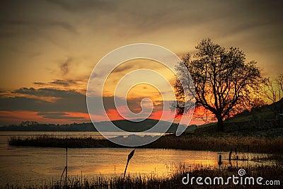 Winter sunset in Ireland