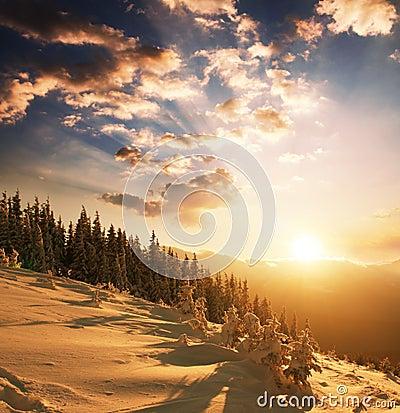 Winter sutset