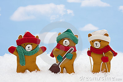 Winter Teddy Bears