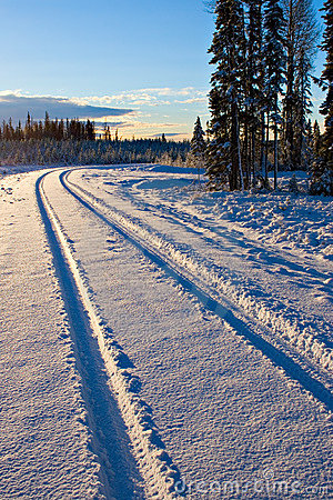 Free Winter Tracks Royalty Free Stock Images - 404079