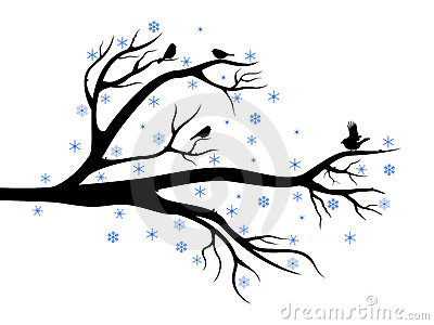 Winter tree with birds