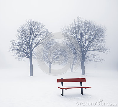 Free Winter Trees And Bench In Fog Stock Image - 29381151