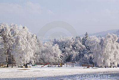 Winter trees holiday landscape