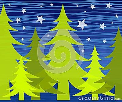 Winter Trees at Night Stars