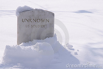 Winter Unknown Soldier s Grave in the Snow