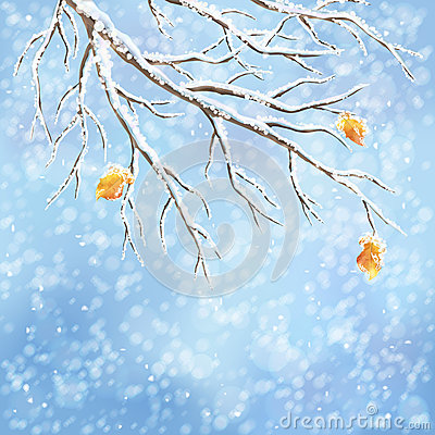 Free Winter Vector Snow-covered Frost Branch Background Royalty Free Stock Photo - 34366135