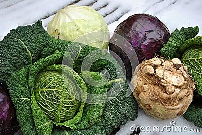 Winter vegetables on snow