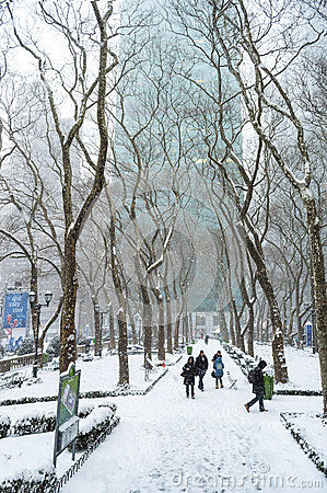 Winter View Bryant Park Editorial Stock Image