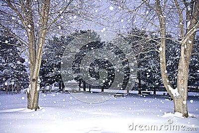 winter wonderland scenes clipart