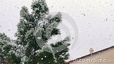 Winterschneefall stock video footage