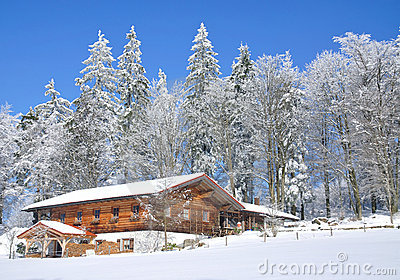 Wintertime in Bavarian Forest