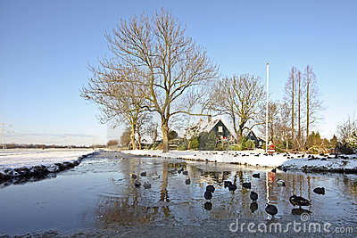 Wintertime in the countryside from the Netherlands
