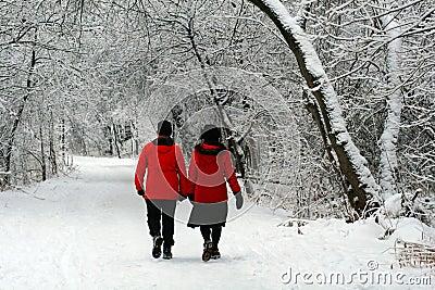 A Wintertime Walk