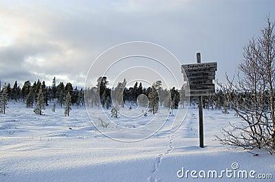 Wintery Signpost