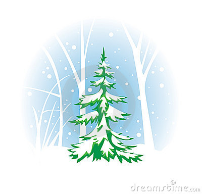 Wintery vector illustration with fir-tree