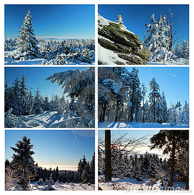 Wintry collage