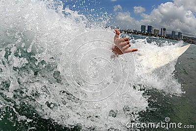 Wipeout Hawaii style