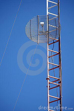 Wire grid antenna